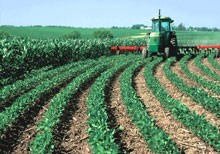Farm equipment tending precisely contoured rows of crops
