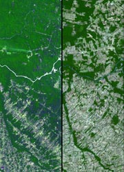 Satellite imagery (Credit: NASA/GSFC/METI/ERSDAC/JAROS and U.S./Japan ASTER Science Team)